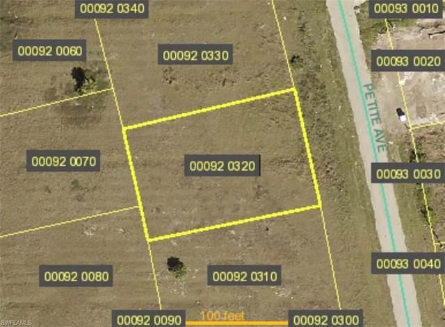 424 Petite Avenue, Lehigh Acres, FL 33974 (MLS #220059324) :: NextHome Advisors