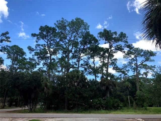 1111 Woods Drive, FORT DENAUD, FL 33935 (MLS #220059684) :: Eric Grainger | Engel & Volkers