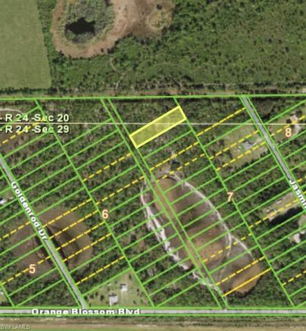 16040 Hibiscus Drive, Punta Gorda, FL 33955 (MLS #220061392) :: Clausen Properties, Inc.