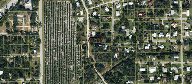 Citrus Street, Labelle, FL 33935 (MLS #220061785) :: Eric Grainger | Engel & Volkers
