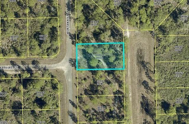 1862 Montana Street, Lehigh Acres, FL 33972 (#220061909) :: Southwest Florida R.E. Group Inc