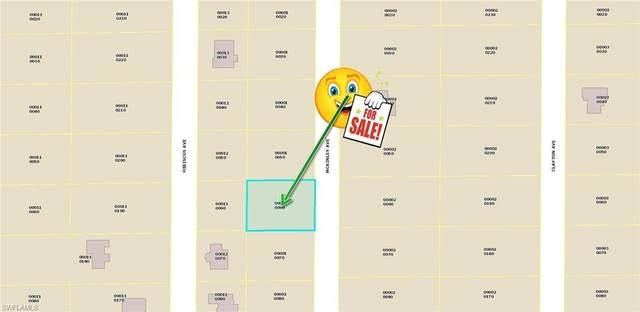 1217 Mckinley Avenue, Lehigh Acres, FL 33972 (MLS #220062730) :: RE/MAX Realty Team
