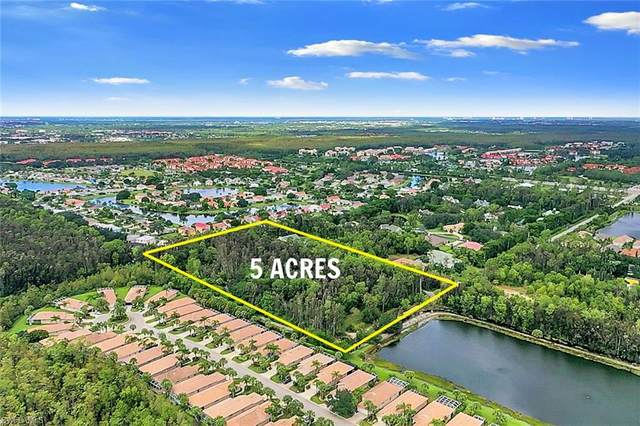 13950 Freshman Lane, Fort Myers, FL 33912 (MLS #220063609) :: #1 Real Estate Services