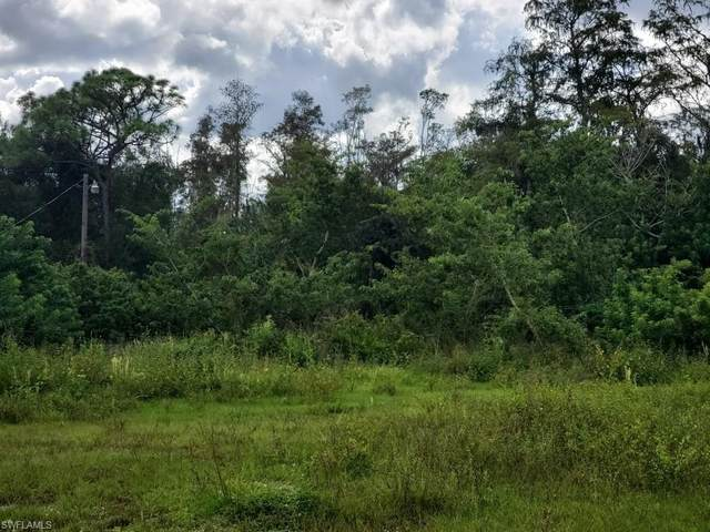 800 A Road, Labelle, FL 33935 (MLS #220065167) :: RE/MAX Realty Group