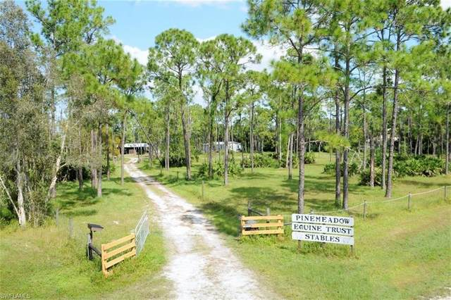 18251 Three B Farm Road, Estero, FL 33928 (#220066762) :: The Dellatorè Real Estate Group