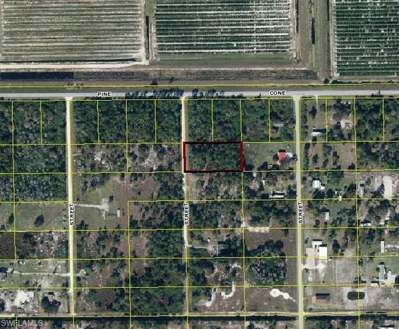 865 N Lindero Street, Clewiston, FL 33440 (MLS #220068685) :: Realty Group Of Southwest Florida