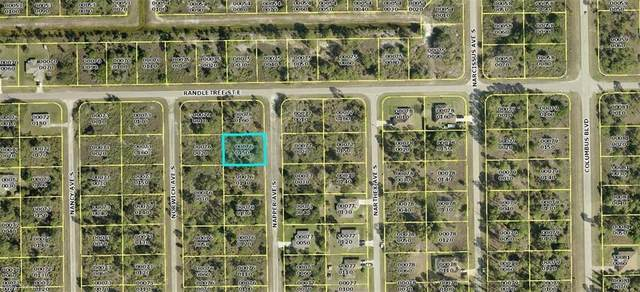 232 Napper Avenue S, Lehigh Acres, FL 33974 (MLS #220069559) :: Medway Realty