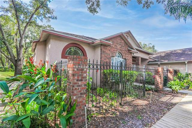 12004 Hope Lane, Tampa, FL 33618 (MLS #220070854) :: The Naples Beach And Homes Team/MVP Realty