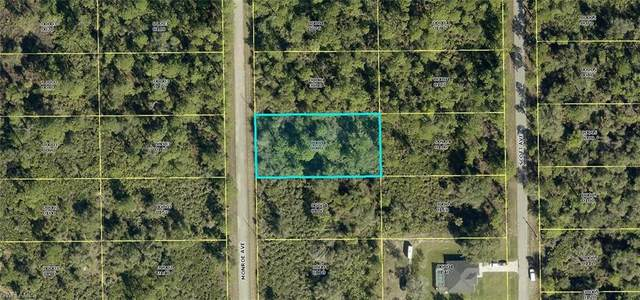 2006 Monroe Avenue, Alva, FL 33920 (MLS #220071390) :: RE/MAX Realty Team