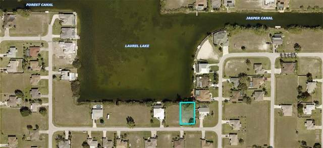 339 NE 17th Street, Cape Coral, FL 33909 (MLS #220075519) :: Dalton Wade Real Estate Group