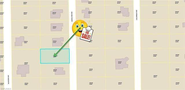 713 Hamilton Avenue, Lehigh Acres, FL 33972 (MLS #220075886) :: NextHome Advisors