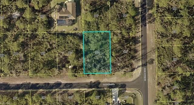 1155 Darling Street E, Lehigh Acres, FL 33974 (MLS #220076904) :: Team Swanbeck