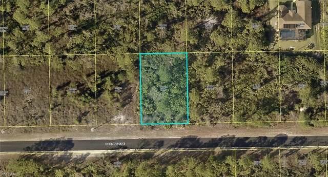 1147 Darling Street E, Lehigh Acres, FL 33974 (MLS #220076928) :: Team Swanbeck