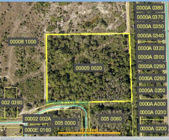 Wyandotte Way, Alva, FL 33920 (MLS #220079773) :: Domain Realty