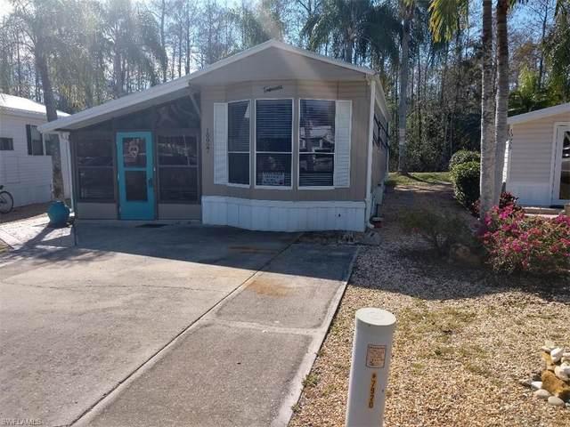 10927 Brown Pelican Circle, Estero, FL 33928 (MLS #220082253) :: Realty Group Of Southwest Florida