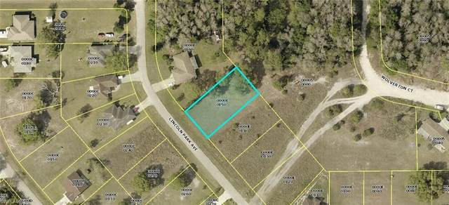 2183 Lincoln Park Avenue, Alva, FL 33920 (MLS #221001393) :: Team Swanbeck