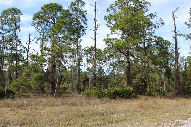 819 Moore Avenue, Lehigh Acres, FL 33972 (MLS #221003138) :: Clausen Properties, Inc.