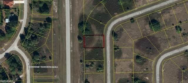 7021 Calder Circle, Labelle, FL 33935 (MLS #221003211) :: Premier Home Experts