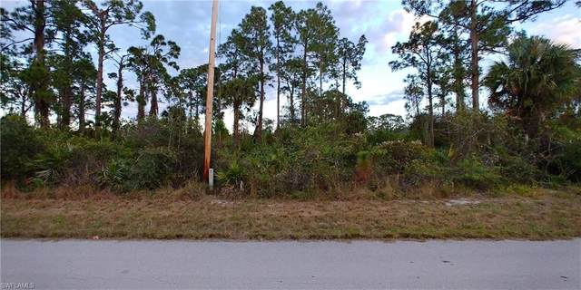 202 W 9th Street, Lehigh Acres, FL 33972 (MLS #221003881) :: Dalton Wade Real Estate Group