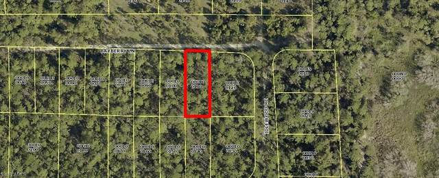 2368 Bayberry Lane, North Fort Myers, FL 33917 (#221004953) :: The Dellatorè Real Estate Group