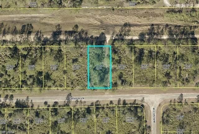 384 Ursula Lane, Lehigh Acres, FL 33972 (MLS #221005583) :: #1 Real Estate Services