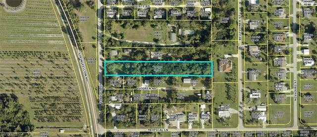 15806 Tortuga Street, Bokeelia, FL 33922 (MLS #221005838) :: #1 Real Estate Services