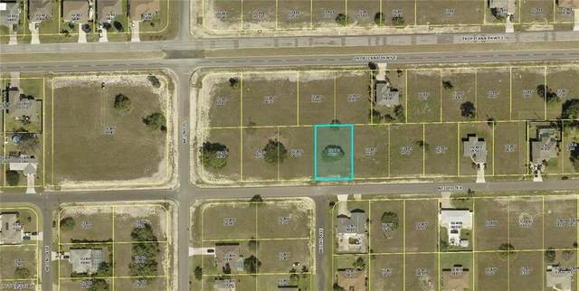 301 NE 7th Terrace, Cape Coral, FL 33909 (MLS #221006538) :: NextHome Advisors
