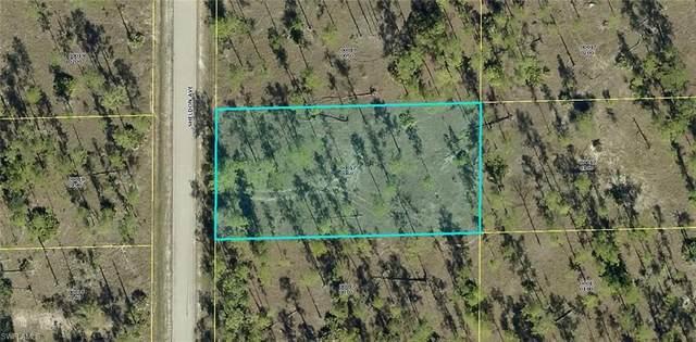 1312 Sheldon Avenue, Lehigh Acres, FL 33972 (MLS #221007022) :: Premier Home Experts