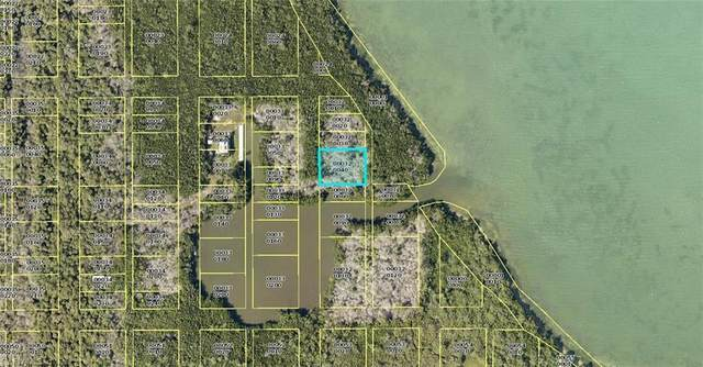 Access Undetermined, Other, FL 33924 (MLS #221009562) :: Realty Group Of Southwest Florida