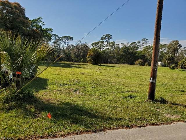 2360 Herzog Road, Alva, FL 33920 (MLS #221010130) :: Domain Realty