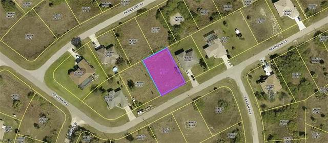 143 Peerless Street, Lehigh Acres, FL 33974 (#221010394) :: The Dellatorè Real Estate Group