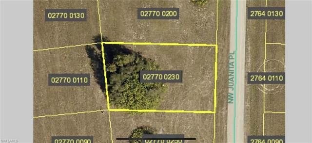 3034 NW Juanita Place, Cape Coral, FL 33993 (#221013088) :: The Dellatorè Real Estate Group