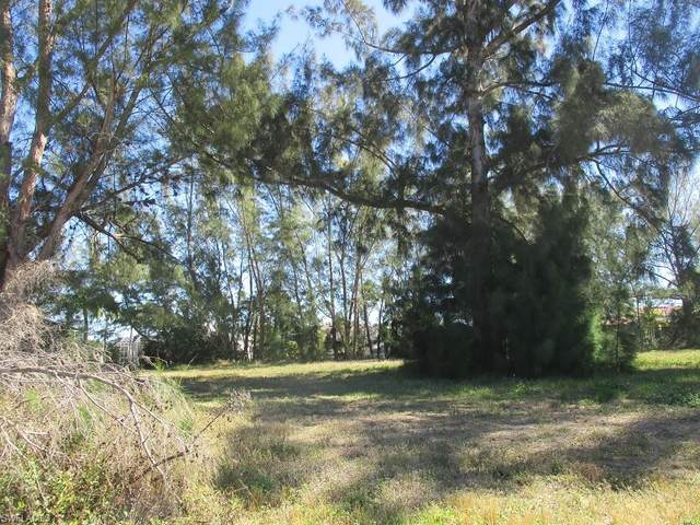 4117 SW 28th Avenue, Cape Coral, FL 33914 (MLS #221013125) :: Clausen Properties, Inc.