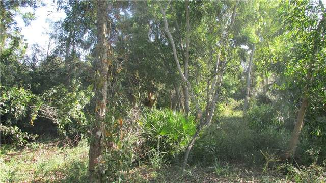 10670 Russell Road, Bokeelia, FL 33922 (MLS #221013520) :: Realty Group Of Southwest Florida