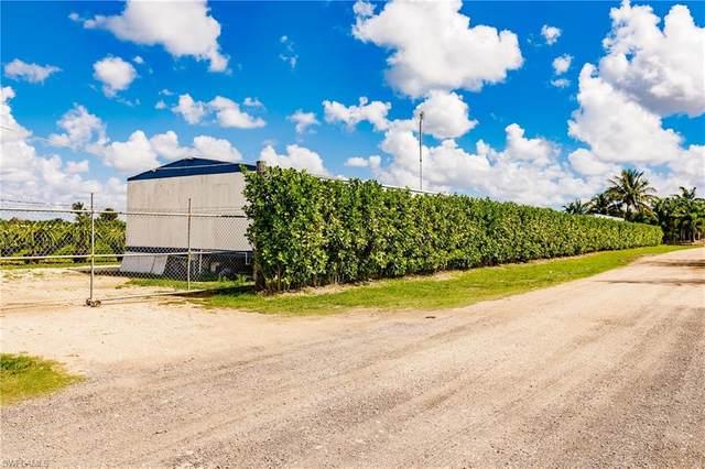 209** SW 210 Street, Miami, FL 33187 (MLS #221016064) :: Kris Asquith's Diamond Coastal Group