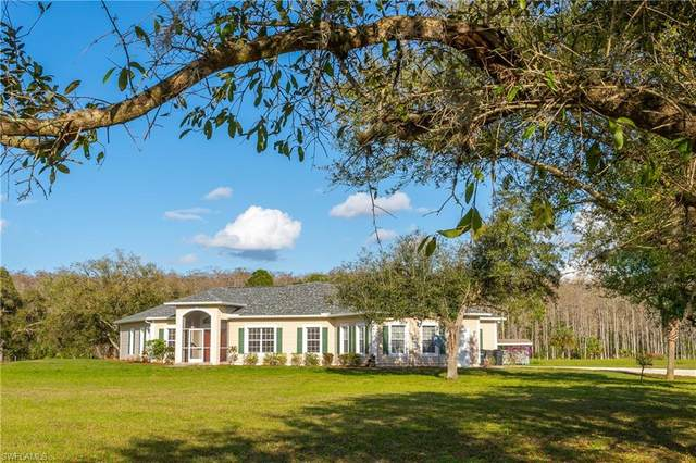 18021 Misty Morning Lane, Fort Myers, FL 33913 (MLS #221017071) :: Domain Realty