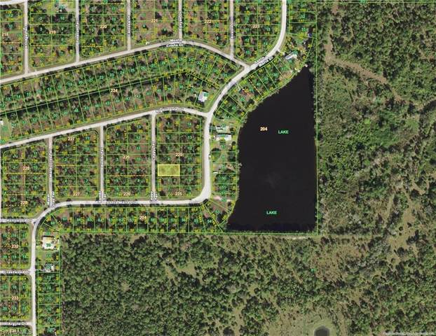 13352 Cappy Terrace, Punta Gorda, FL 33955 (MLS #221017543) :: Avantgarde