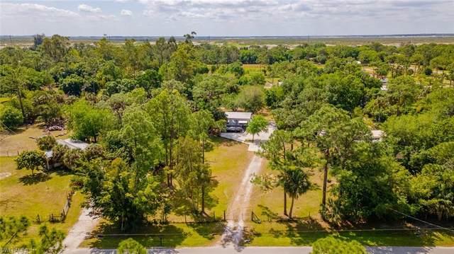 6257 N Double J Acres Road, Labelle, FL 33935 (MLS #221023444) :: NextHome Advisors