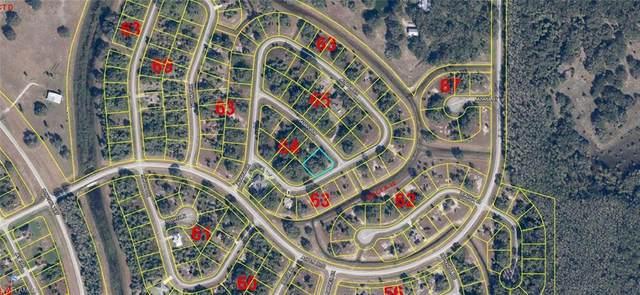 Jabara Lane, Labelle, FL 33935 (MLS #221024360) :: NextHome Advisors