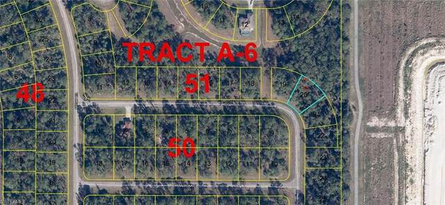 Rugby Circle, Labelle, FL 33935 (MLS #221024550) :: NextHome Advisors
