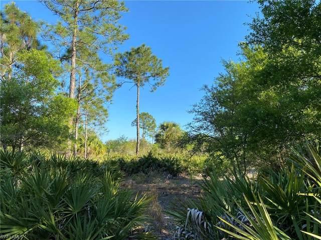 2100 Al Don Farming Road, Clewiston, FL 33440 (MLS #221027074) :: Medway Realty