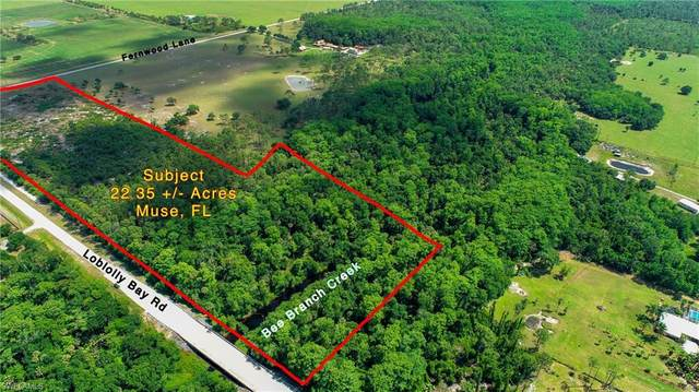 Loblolly Bay Road, Labelle, FL 33935 (MLS #221028438) :: Realty Group Of Southwest Florida