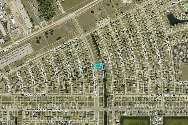 133 Cultural Park Boulevard N, Cape Coral, FL 33909 (MLS #221028502) :: Realty World J. Pavich Real Estate