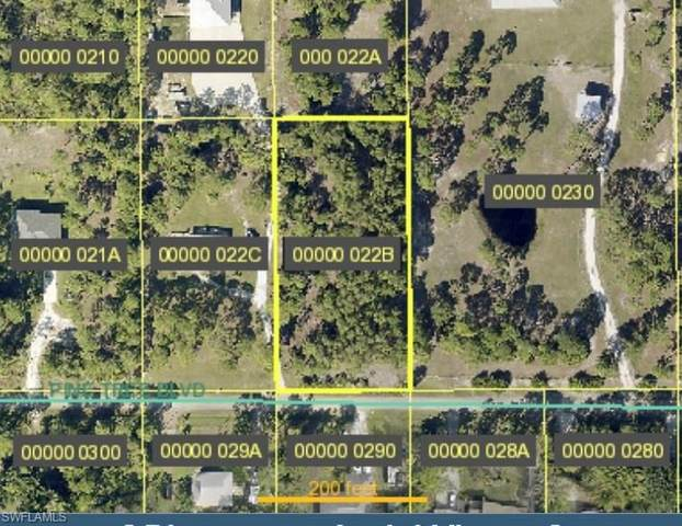 4200 Pinetree Boulevard, St. James City, FL 33956 (MLS #221029063) :: Realty World J. Pavich Real Estate