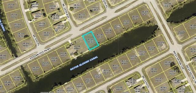 1002 Vogiantzis Parkway, Cape Coral, FL 33909 (MLS #221029427) :: Realty World J. Pavich Real Estate