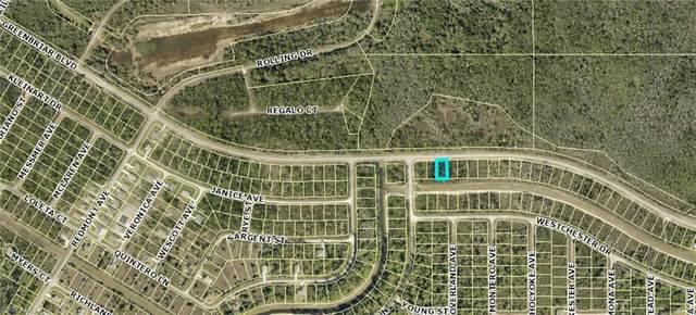 509 Greenbriar Boulevard, Lehigh Acres, FL 33972 (MLS #221029718) :: Medway Realty