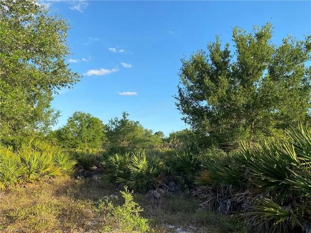 2000 Al Don Farming Road, Clewiston, FL 33440 (MLS #221029759) :: Domain Realty