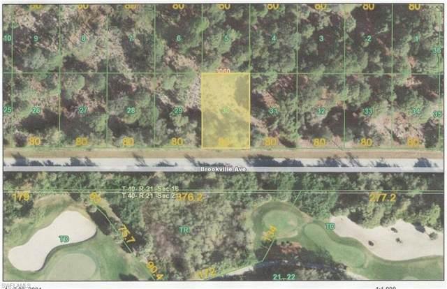 13578 Brookville Avenue, Port Charlotte, FL 33953 (MLS #221030174) :: Medway Realty