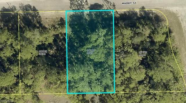 2428 Mabry Street, Alva, FL 33920 (MLS #221031049) :: Premiere Plus Realty Co.