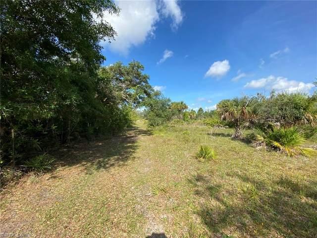 49587 Bermont Road, Punta Gorda, FL 33982 (MLS #221033766) :: Wentworth Realty Group
